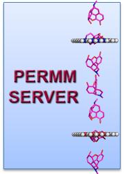 PerMM server