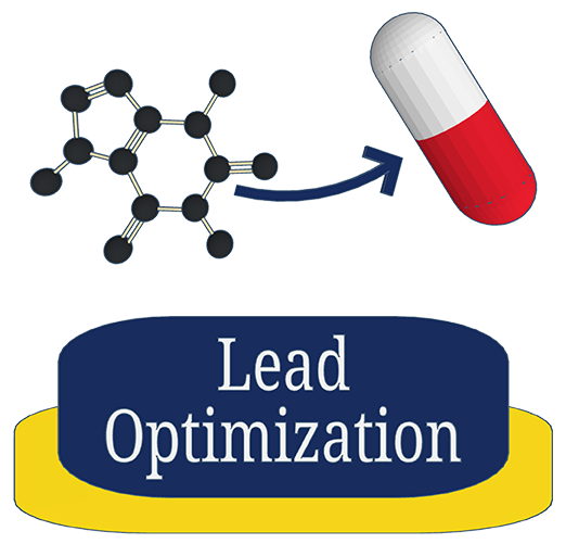 Lead Optimization image