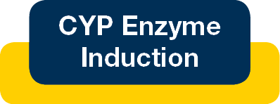 CYP enzyme induction