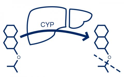 Microsomal Stability image