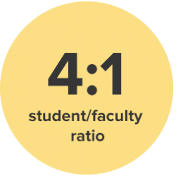 4:1 student/faculty ratio